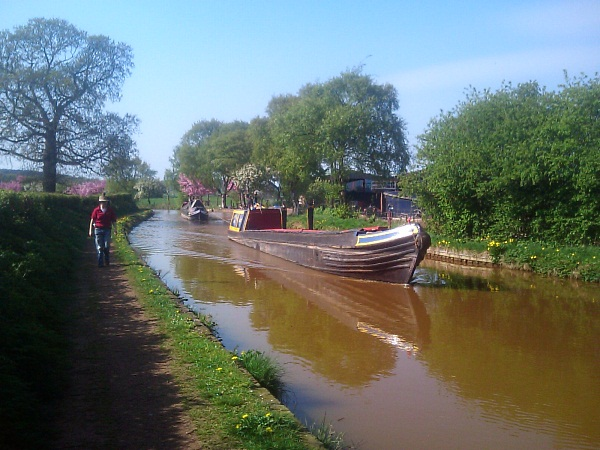 Pair of working boats on Trent and Mersey canal