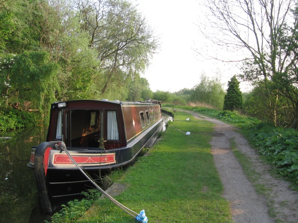 Narrowboat moored in wooded section of canal