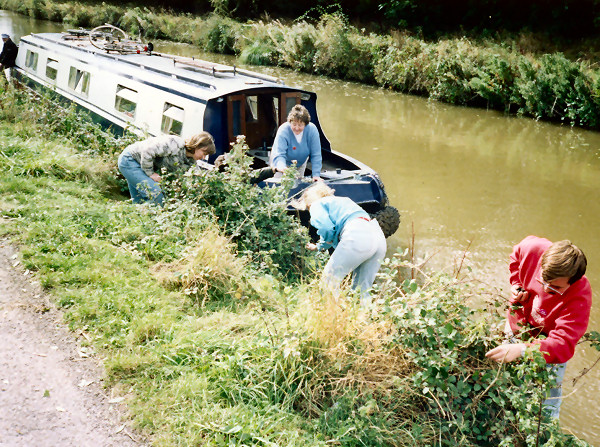 Bramble picking by canal